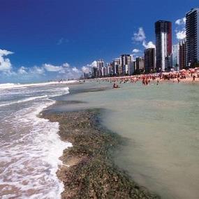 Recife con Gol - Verano