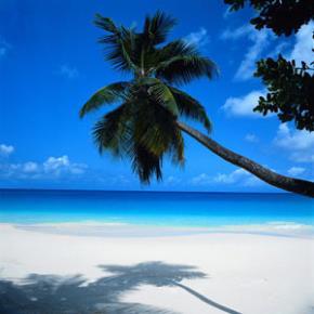 Cancun - Vacaciones de Julio  -  LA