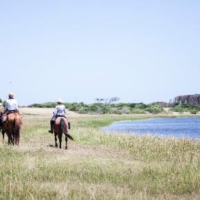 Punta del Este - Cabalgatas por campo, laguna y/o playa - Turismo Nacional