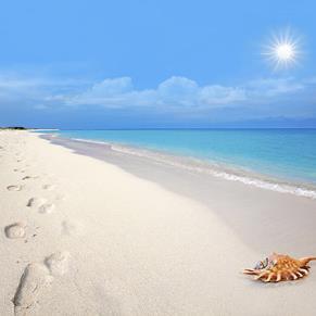 Aruba - Verano - Avianca