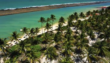Circuitos de Brasil - Playas Tropicales - Maceió / Maragogi / Porto de Galinhas - con Latam