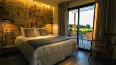Noches para disfrutar en Pizzorno Lodge & Wine -  Turismo Nacional