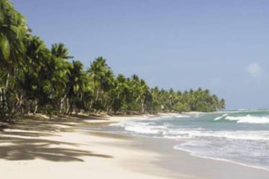 Punta Cana Flexible  -  Copa Vacations