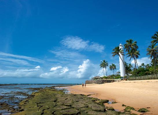Praia do Forte con Latam - Verano