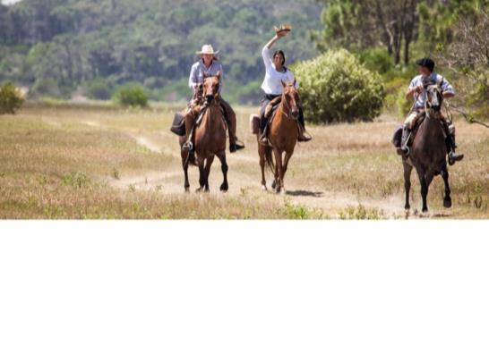 Cabalgatas al monte de ciervos Promo 2 x 1  - Turismo Nacional
