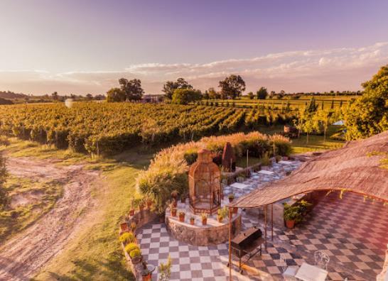Carmelo - Narbona Wine Lodge - Turismo Nacional