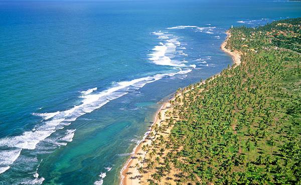Praia do Forte  - Semana de Turismo - G3