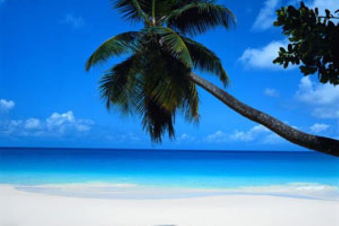 Cancun  - Semana de Turismo  -  Avianca