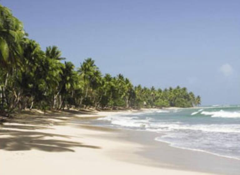Punta Cana - Semana de Turismo - American Airlines