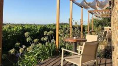 Bodega Pizzorno Lodge & Wine -  Escapada Romantica - Turismo Nacional