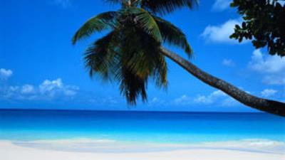 Riviera Maya - Personal de Salud o Educacion - Copa Vacations
