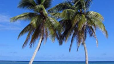 Punta Cana by Bahia Principe - Copa Vacations